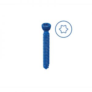 Safety Lock Screw Ø 2.4mm - Variable Angle (Star Like)